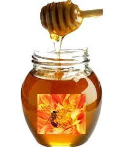 Mel Apisland Flores Silvestres Wild Flowers Honey 1kg Napoleao