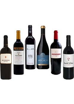 Limited Edition Red Wine Tasting Selection Pack 6 bottles of 750ml each