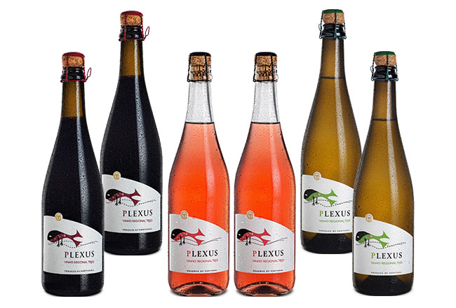 Plexus Aerated Sparkling Wine Selection Pack 6 bts